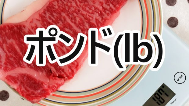 ステーキ0.5ポンドから3ポンドまでの写真とカロリー等の栄養成分まとめ