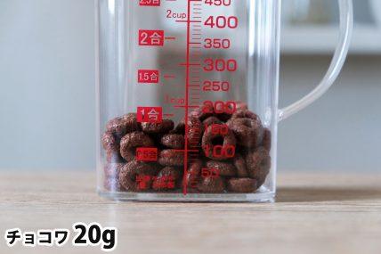 チョコワ20gの分量